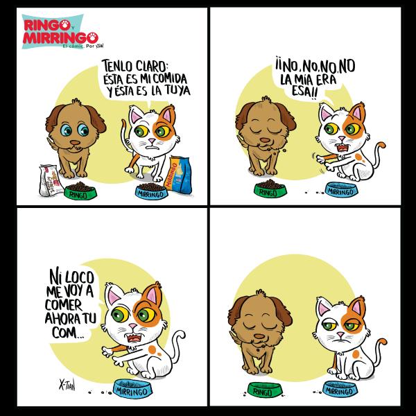 Capítulo 5 de Las aventuras de Ringo y Mirringo Panamá