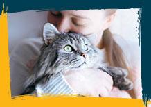 Consentir a tu gato
