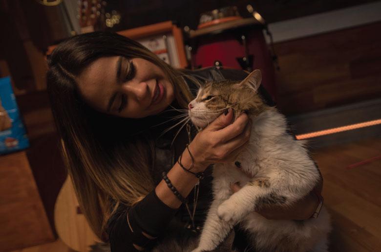 El gato de Kata Otalvaro
