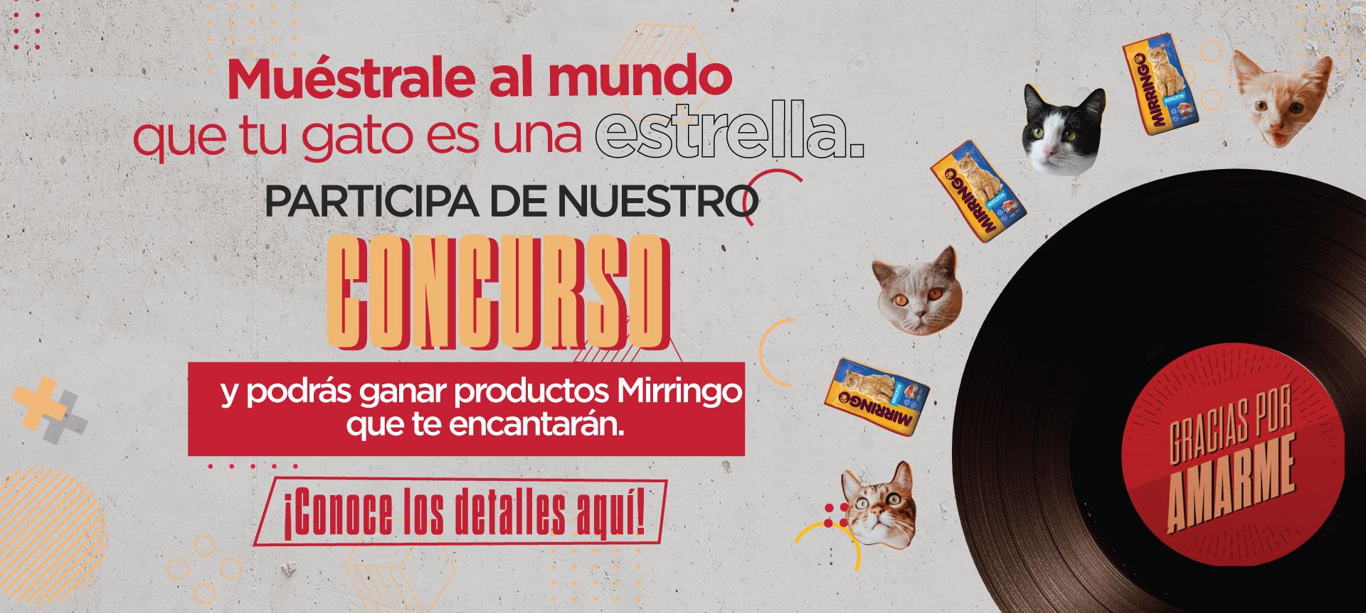 Participa con tu gato del concurso Mirringo